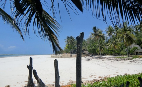 Strandbungalows am Diani Beach