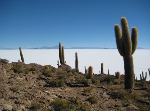 uyuni christian singles Toxic 10: new jersey's most polluted sites new jersey is still grappling with the toxic residue of its industrial past.
