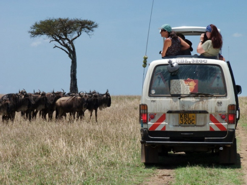 Individuelle Safaris in der Massai Mara