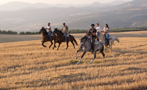 Exklusive Pferde-Ranch in Andalusien