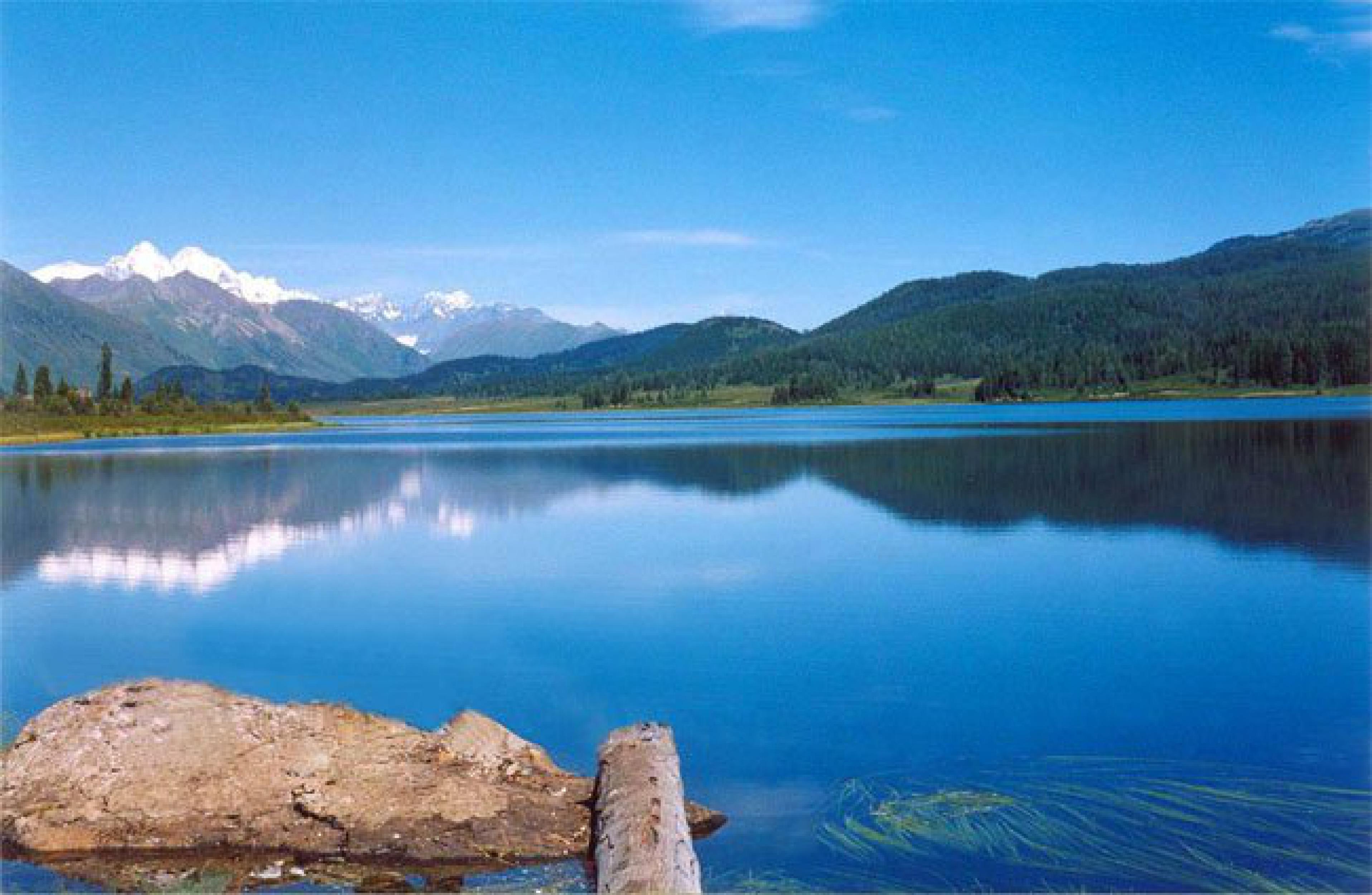 хороших результатов фотографии озера маркаколь в казахстане пудра, крахмал яичный