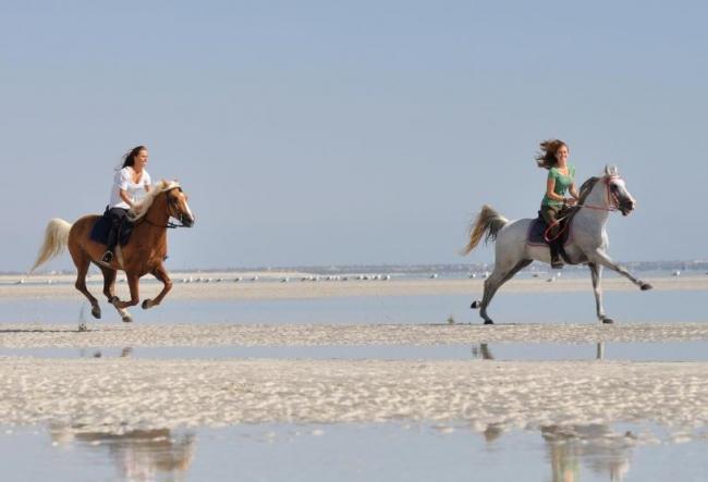 travel-friends.com - Urlaub bei Auswanderern :: Tunesien ...