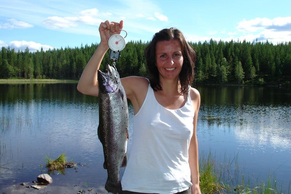 Single in Schweden