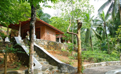Regenwald ECO-Lodge im Singharaja Forest